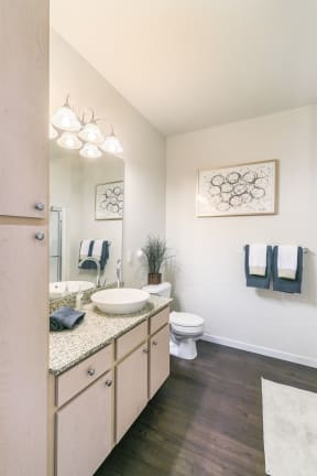 Spacious Bathrooms with Raised Bowl Bathroom Sinks at Aventura at Forest Park, Missouri