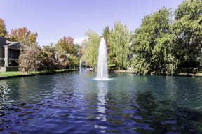 Harbor Oaks lakeside