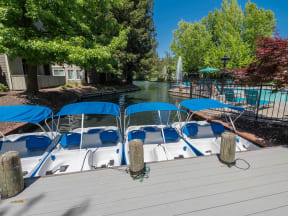 Brand New Paddle Boats