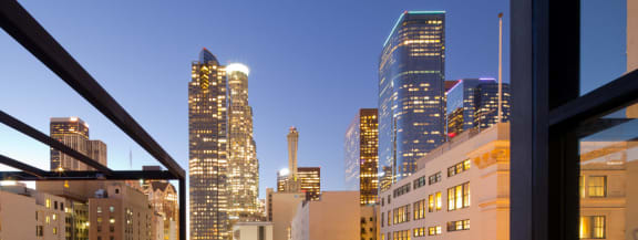 City View of DTLA from Roof