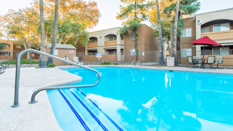 Tanglewood pool view with relaxation area and tall trees surrounding