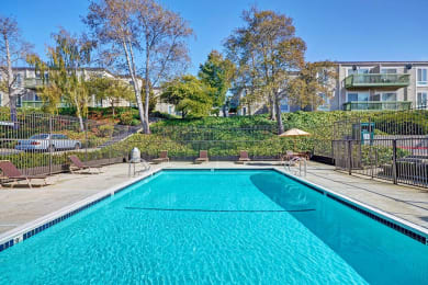 pool at Baycliff Apartments in Richmond, CA