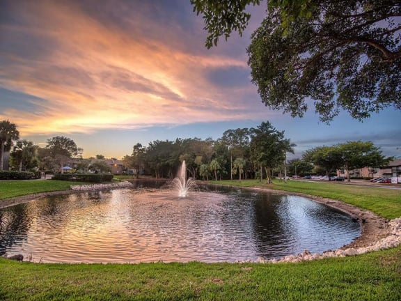fountains at forestwood sunset lake view