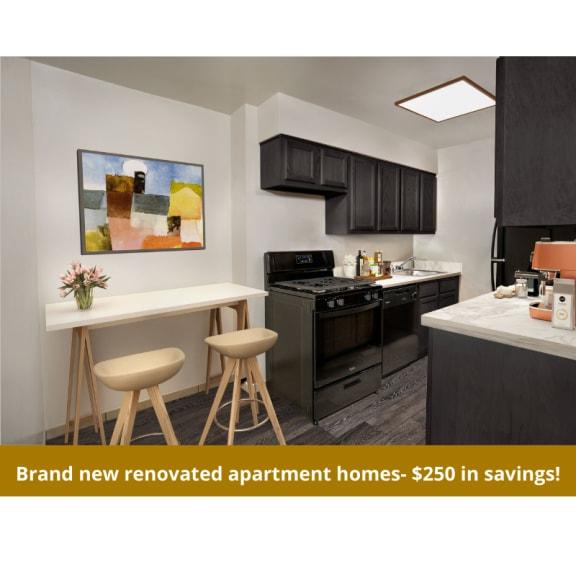 Brand new renovated kitchen at Grandview apartments in Falls Church VA