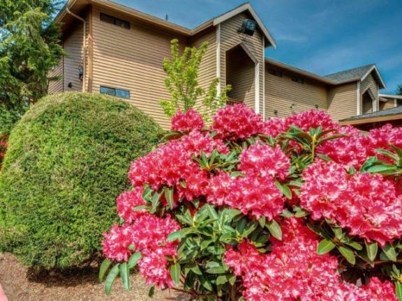 Chambers Creek Building Exterior & Floral Landscaping
