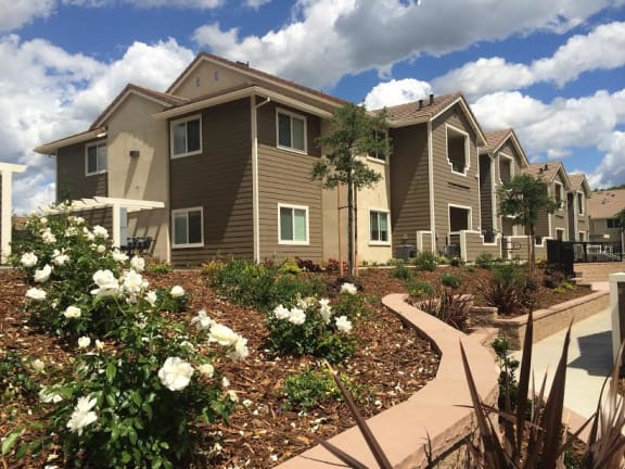 The Oaks at Hackberry | Apartments | Exterior