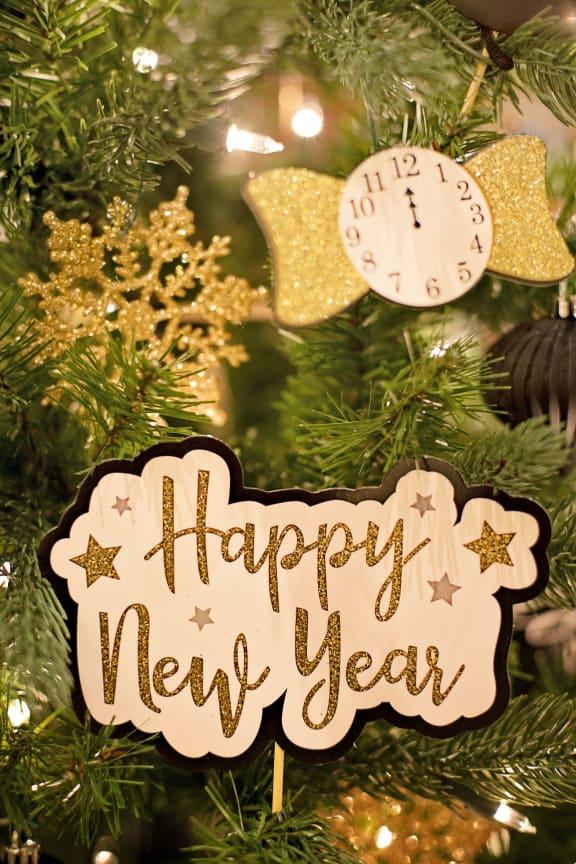New Year at Knollwood Meadows Apartments, Santa Maria, 93455