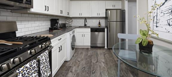 PLATINUM Premium Upgraded Kitchen with Stainless Steel Appliances at Trillium Apartments in Fairfax