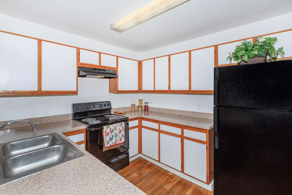 Kitchen with double sink, black appliances, white cabinets with wood trim, brown wood style flooring, speckled counter top