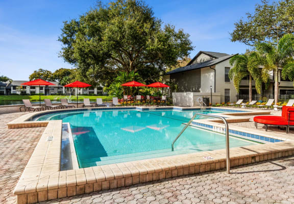 Swimming pool at Carrollwood Station Apartments