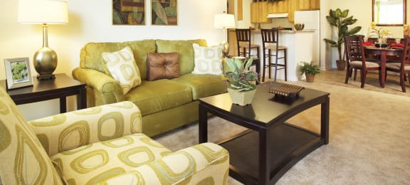 Living room at Magnolia Point Apartments in Durham, NC