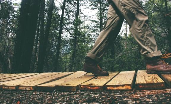 Man Walking On Wood Bridge in Forest