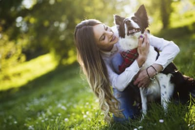 pet-friendly apartments in Gainesville
