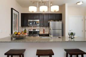 Luxurious modern kitchen - 2828 Zuni - LoHi District Denver