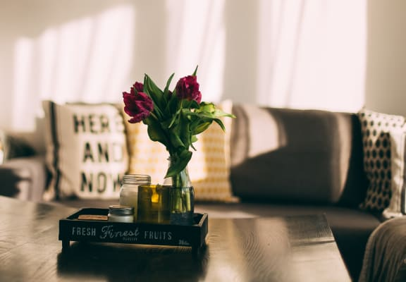 Flowers on coffee table with sun shining in the window