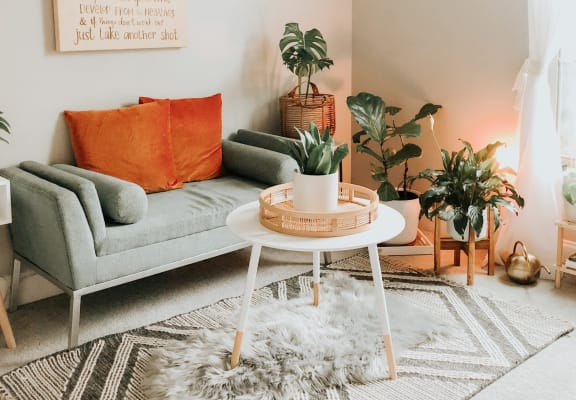 Living room with small coffee table, orange pillows and plants