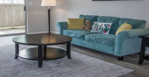 Decorated Living Room at Enclave Apartments, Texas