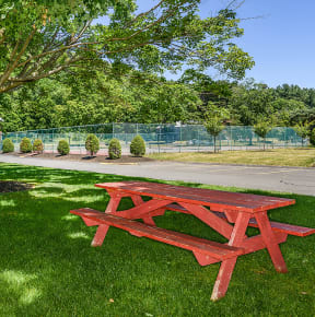 Grill And Picnic Area| Cliffside