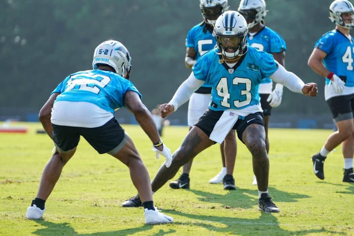 Carolina Panthers Weakness: Defense