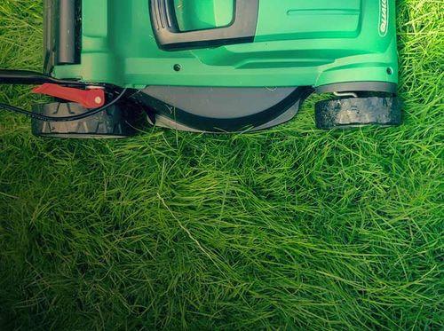 Grön gräsklippare klipper gräset i trädgården