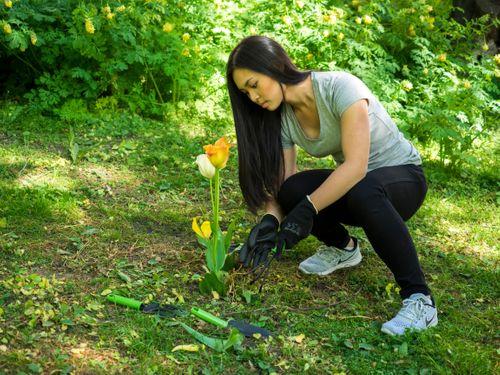 Tjej planterar tulpaner i trädgården