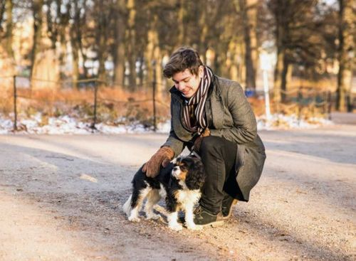 Hundpassning av en liten hund i Humlegården