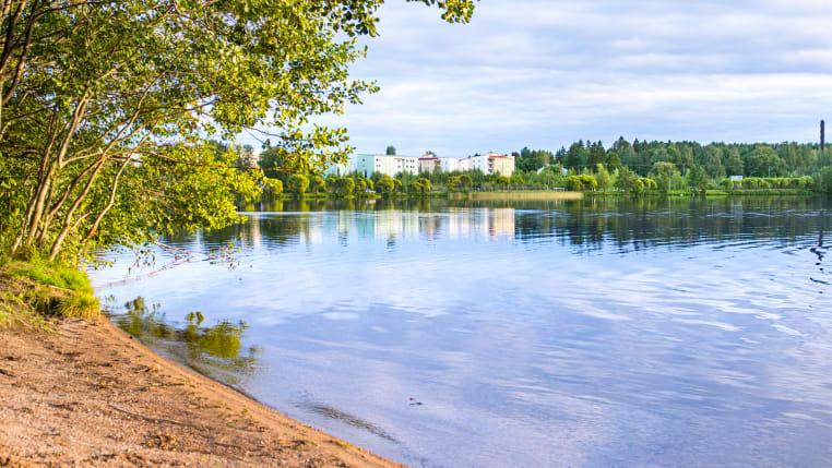 Tampere Tohlopinrata