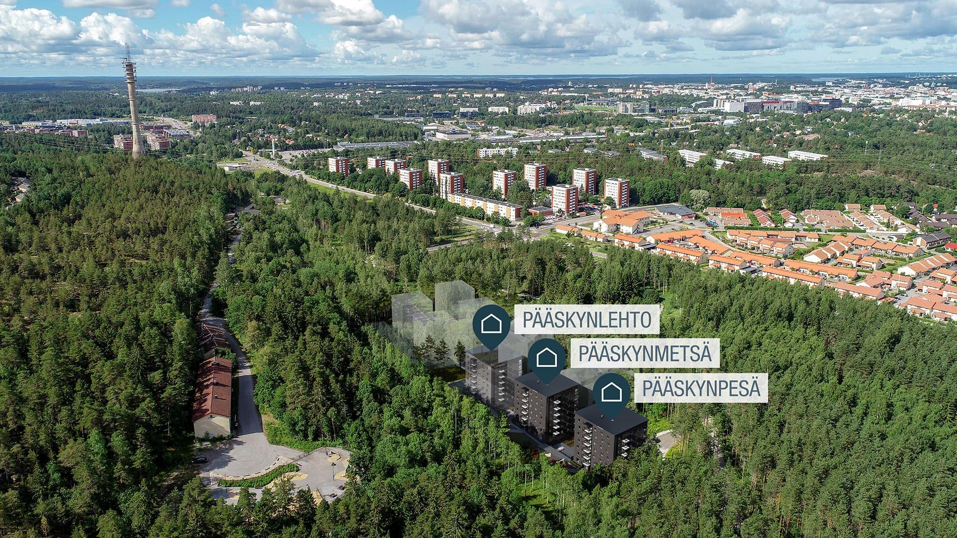 Asunto Oy Turun Pääskynmetsä, Pääskyvuorenrinne