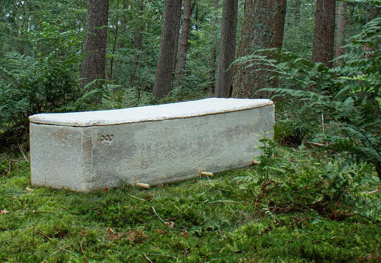 Биоразлагаемый гроб. Фото: Living Cocoon.