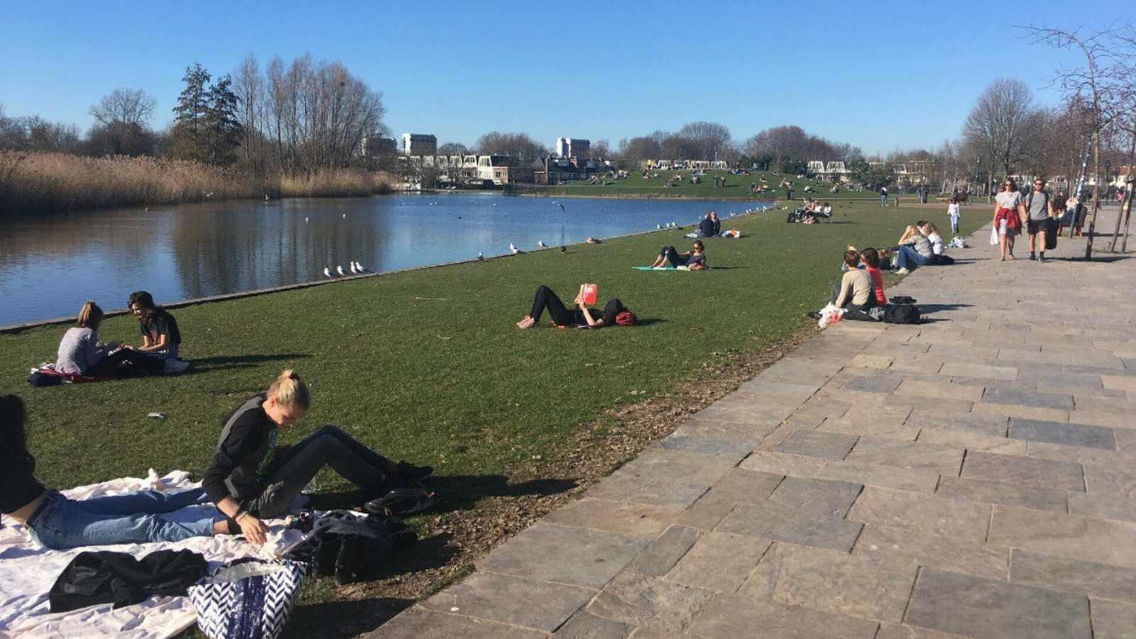 Парк Griftpark в Утрехте, февраль 2019 г. Фото: RTV Utrecht.