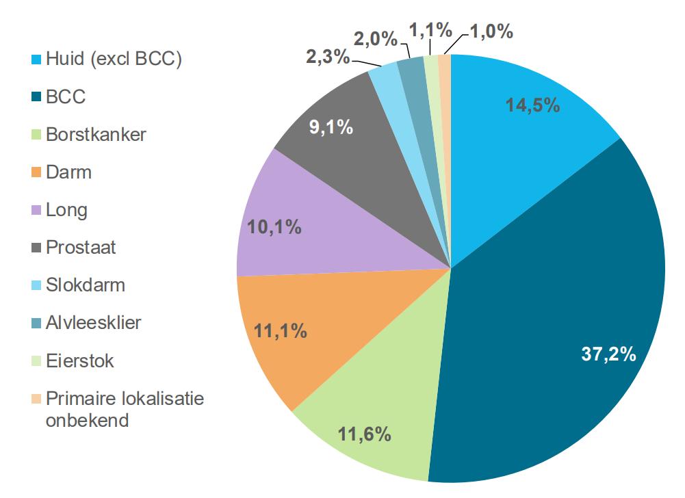 Распределение видов онкологических заболеваний в Нидерландах (2017 год). Источник: доклад IKNL.