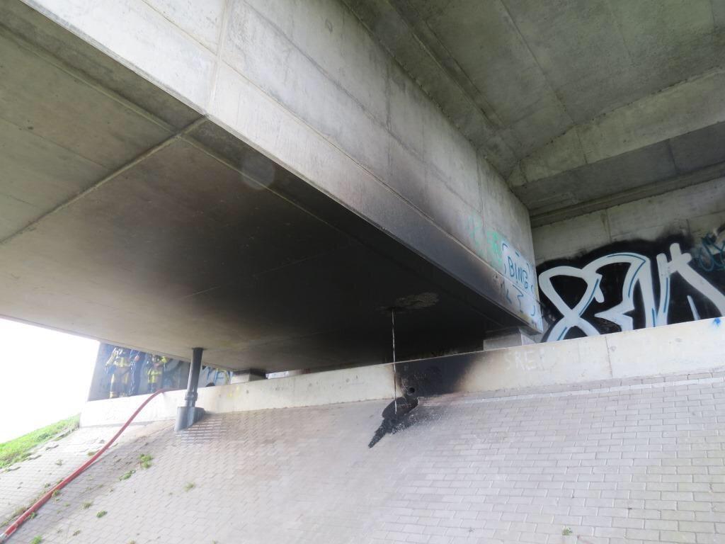 Жёлоб моста с плантацией внутри. Фото: VRT NWS.