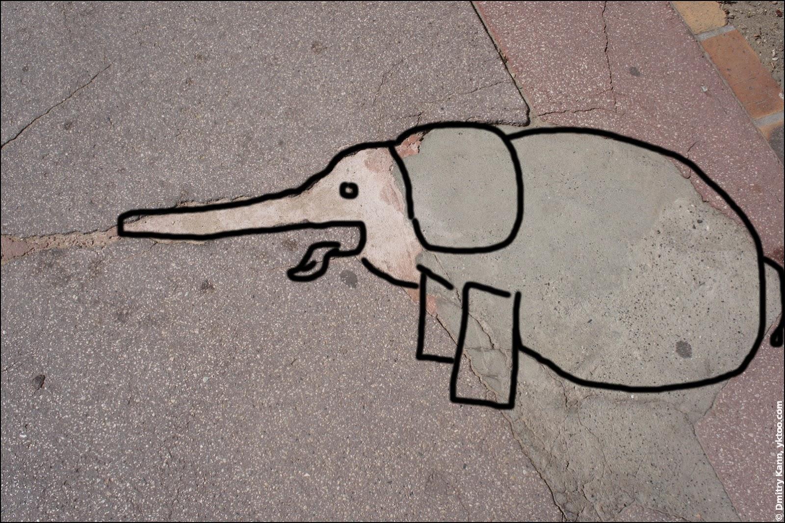 An elephant!