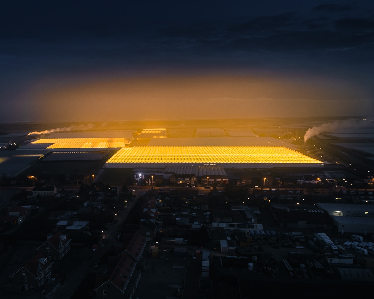 Нидерландские теплицы с высоты. Фото: ©Tom Hegen.
