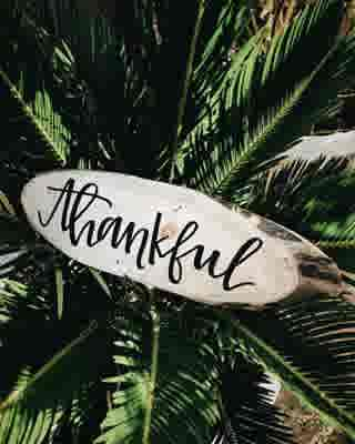 This Thanksgiving (and every Thanksgiving) we're thankful for all of our Boca Life readers and followers. You make what we do special. ⠀ ⠀ #thanksgiving #thankful #givethanks #grateful #family #food #friends #holiday #holidays #holidayseason #bocalifemagazine #bocaraton #florida #southflorida #magainzes #gulfstreammediagroup #boca #thanksgivingday #thanksgiving2017 #eating #pilgrims #america #givingthanks #turkey #pie #feast #thankyou #thanks #bocalifemag #bocalife