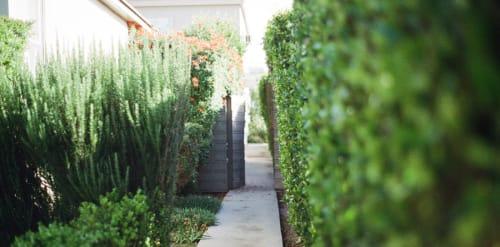 garden-way web.jpg