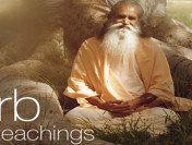 YogaVille – Satchidananda Ashram Yoga Retreat & Teacher Training Program