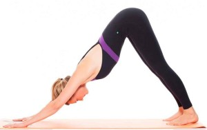 downward facing dog pose  yogacurious blog