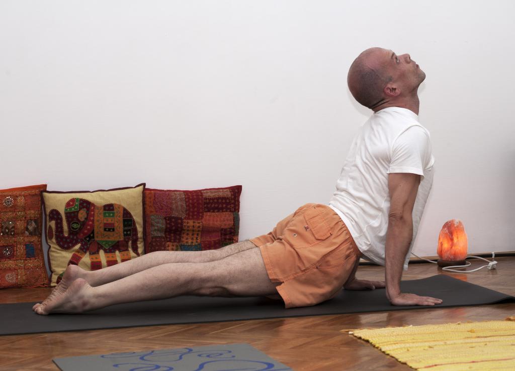 upward facing dog pose urdhva mukha shavasana