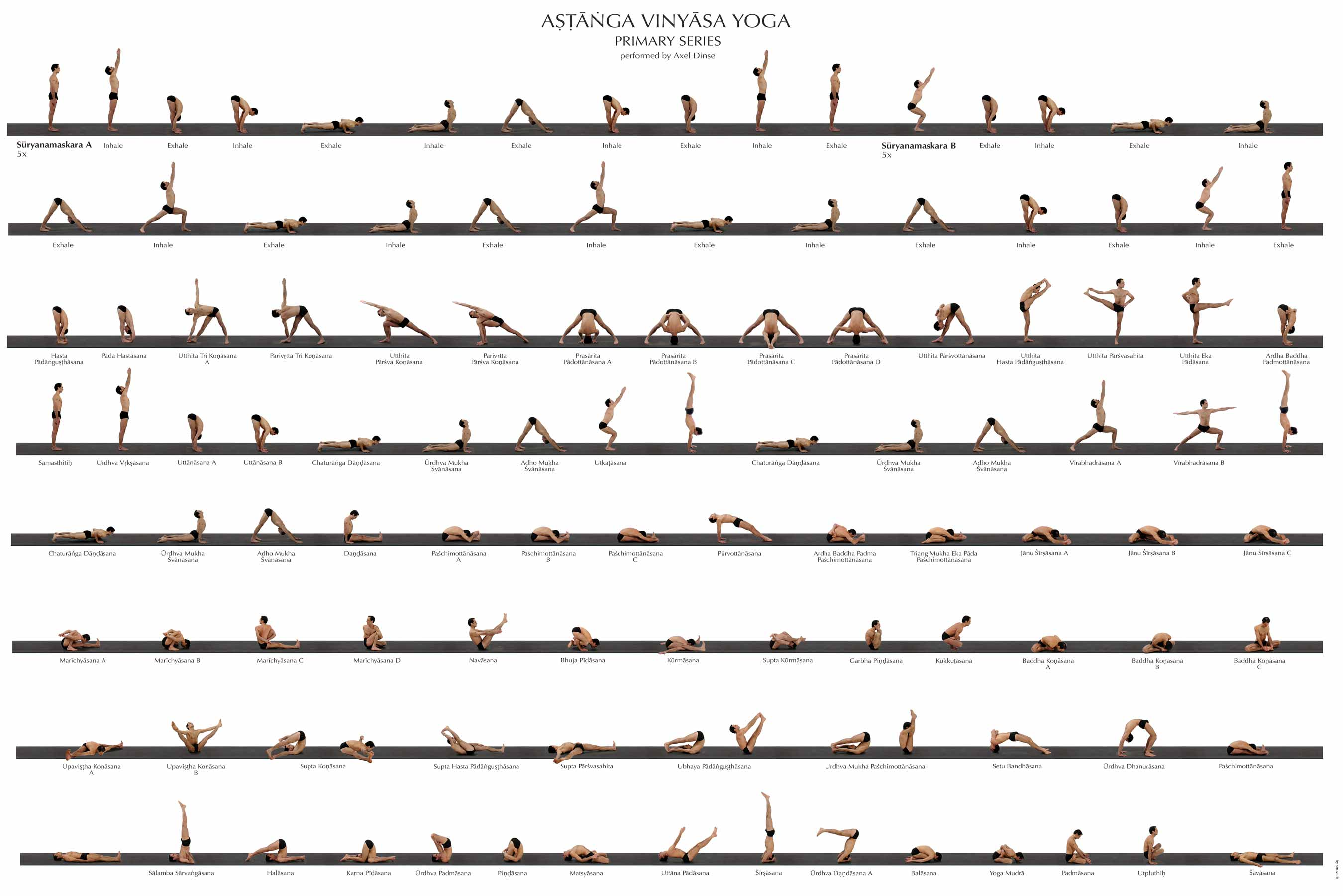 Brief About Ashtanga Vinyasa Yoga Primary Series With Photograph