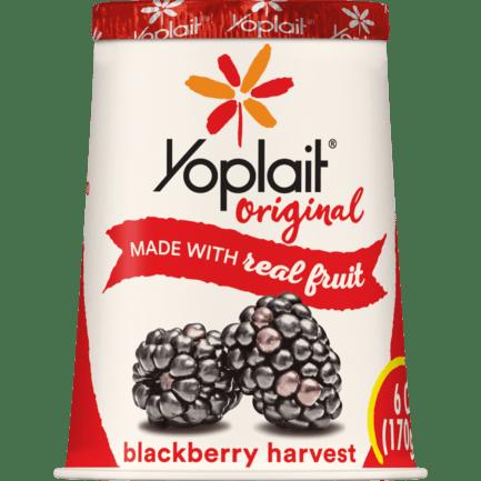 Blackberry Harvest