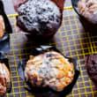Assorted muffins box