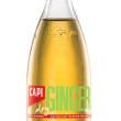Capi Ginger Ale (24x250ml)