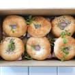 GF Assorted gourmet bagels