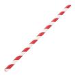 DSSR10 STRAW REGULAR PAPER RED & WHITE STRIPED 205MM (CT2500)