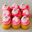 Baby girl mini cupcakes (12 pcs)