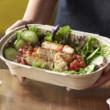 Grilled Chicken Salad (Mild)