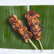 Thai chicken satay skewer (DF)