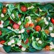 Bocconcini Tomato Spinach salad