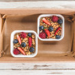 Yoghurt and Fruit (150ml) (10 pcs)
